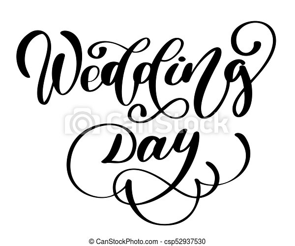wedding day vector text on white background calligraphy vectors rh canstockphoto com wedding vector free wedding vector png