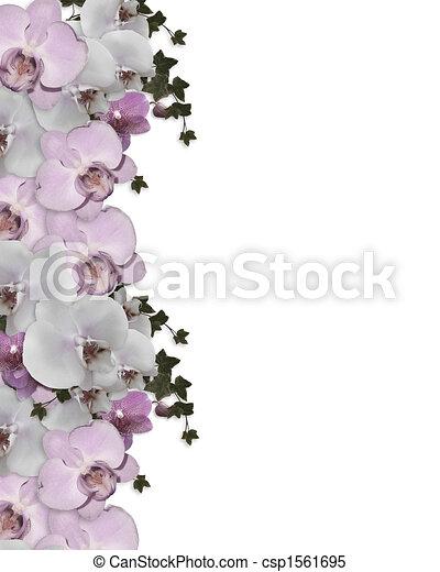 Wedding invitation Border orchids ivy - csp1561695