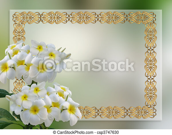 Wedding Invitation Plumeria Image And Illustration Composition Of