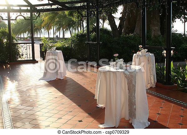 Wedding reception - csp0709329