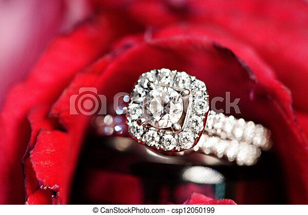 Wedding rings and rose - csp12050199