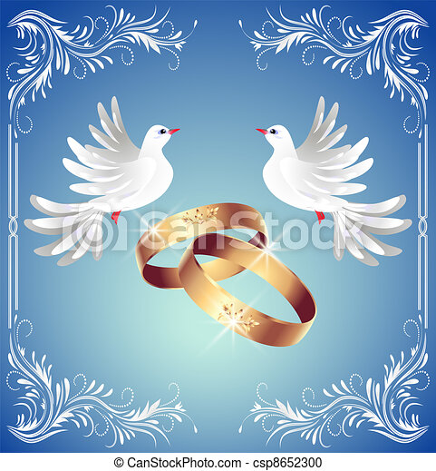 Wedding rings and two doves - csp8652300