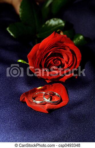 Wedding rings II - csp0493348