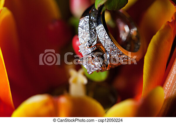 Wedding rings on floral background - csp12050224