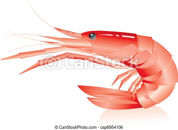 Shrimps im weißen Hintergrund - csp6954106
