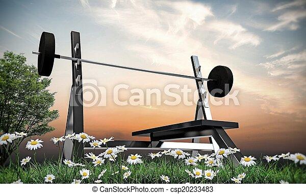 weight bench - csp20233483