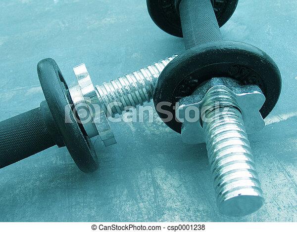 Weights - csp0001238