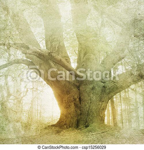 weinlese, landschaftsbild, wald, hintergrund - csp15256029