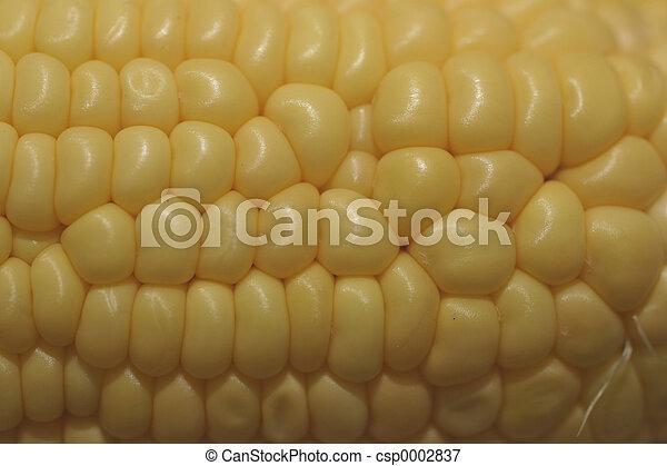 Weird Corn - csp0002837