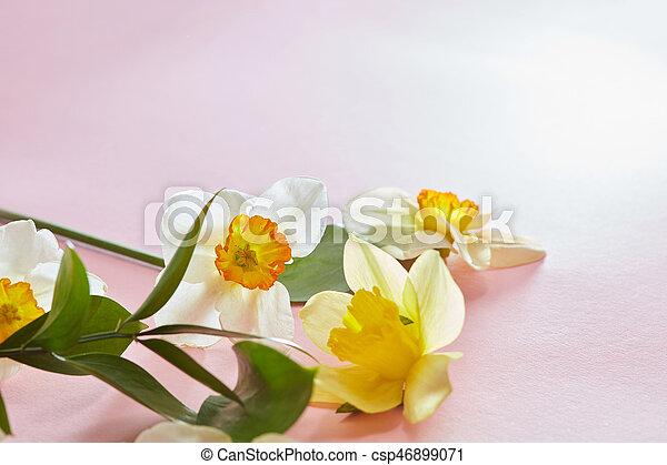 Weisse blumen, hintergrund, hülle. Rosa, schöne , blumen, aus ...