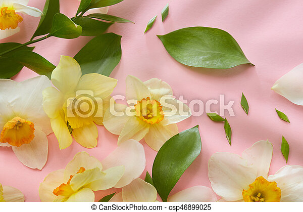 Weisse blumen, hintergrund, hülle. Rosa, ansicht, oberseite ...