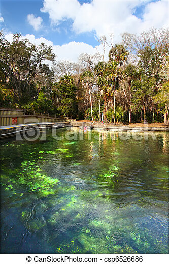 Wekiwa Springs in Florida - csp6526686