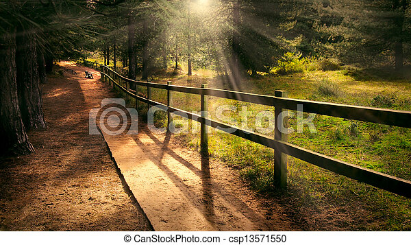 Welcoming path - csp13571550