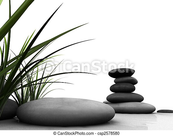 wellness - csp2578580