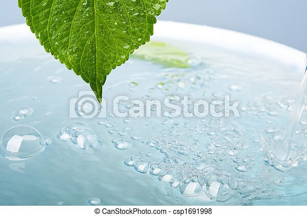 wellness concept with leaf and bath - csp1691998