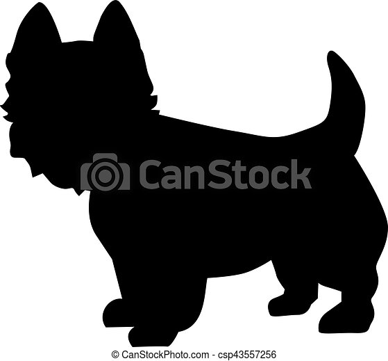 West Highland Terrier silhouette - csp43557256