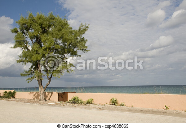 West Palm Beach in Florida - csp4638063
