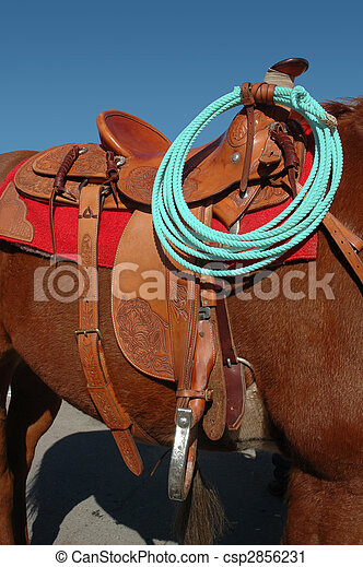 Similar Images, Stock Photos & Vectors of Western Horse