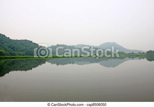 Wetland pond - csp8506050