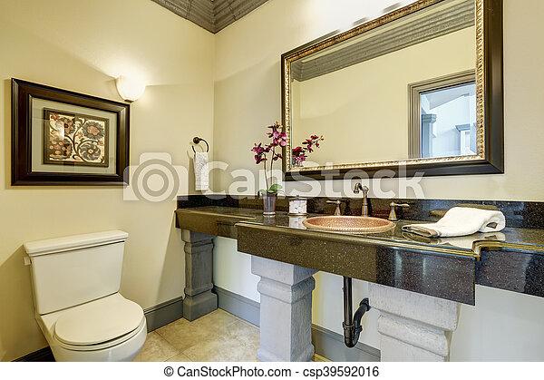 Wewnętrzny Dom łazienka Luksus Elegancki