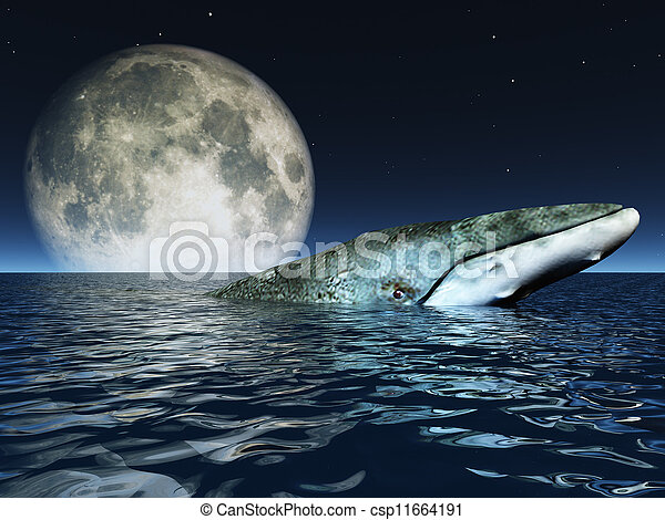 Whale on oceans surface with full moon - csp11664191
