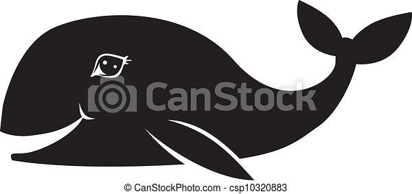 Whale smiles - csp10320883