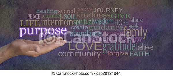 What is Life's Purpose - csp28124844