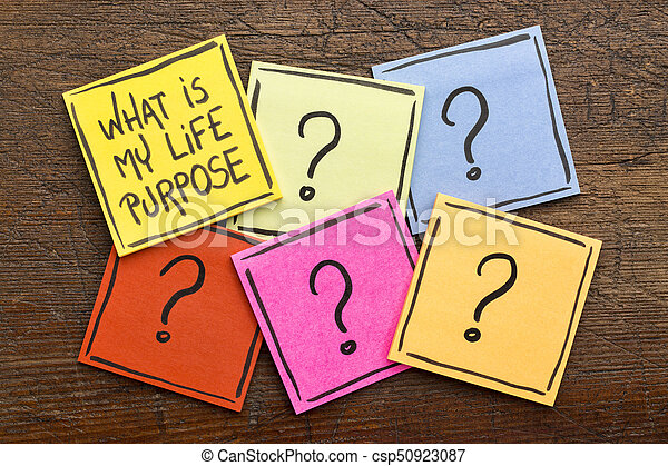 What is my life purpose? - csp50923087