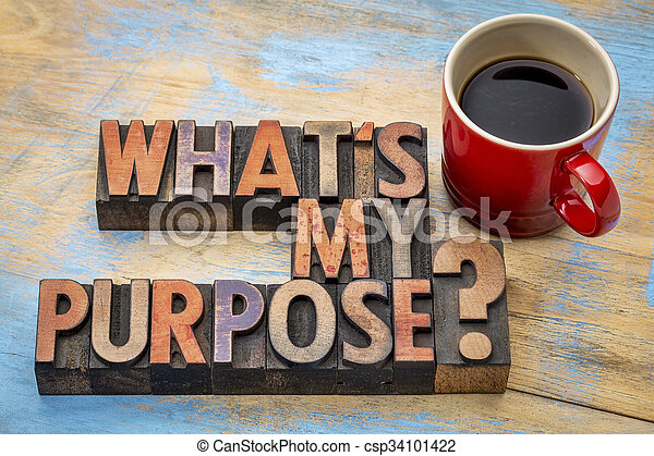 What is my purpose question - csp34101422