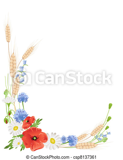 wheat and wildflowers - csp8137361