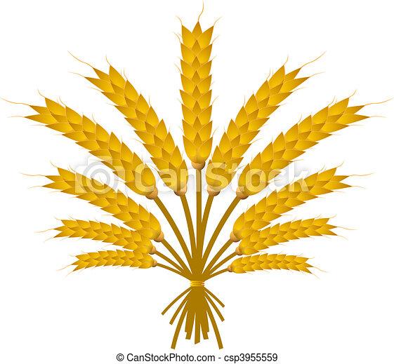 Wheat Bundle - csp3955559