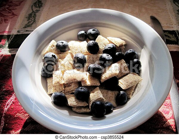 Wheat cereal with blueberries - csp3855524