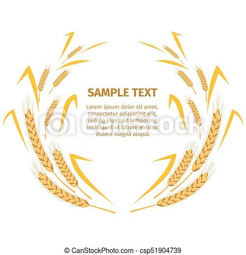 Wheat Ears around Your Text Sample on White - csp51904739