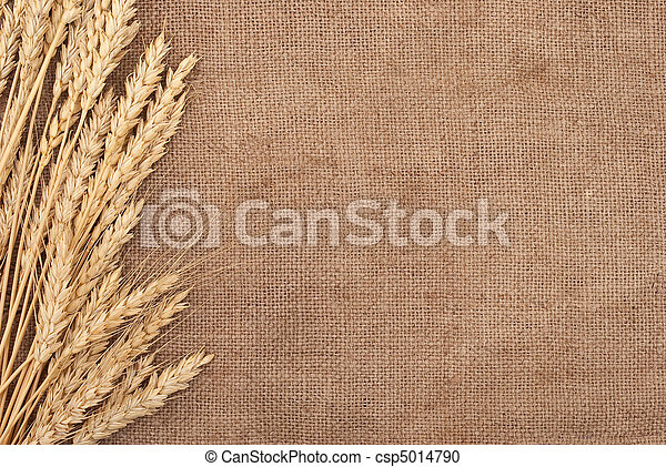Wheat ears border on burlap background  - csp5014790