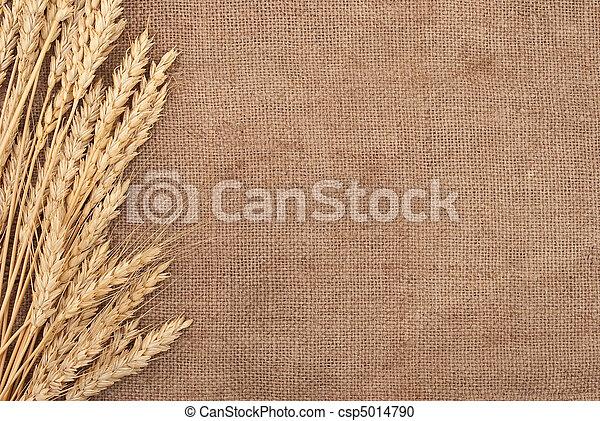 Wheat ears border on burlap background  - csp5014790