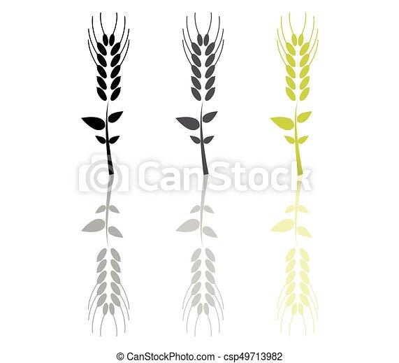 wheat ears - csp49713982