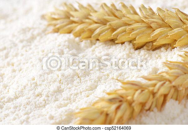 wheat flour and wheat ears - csp52164069