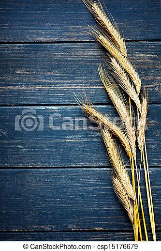 Wheat frame - csp15176679