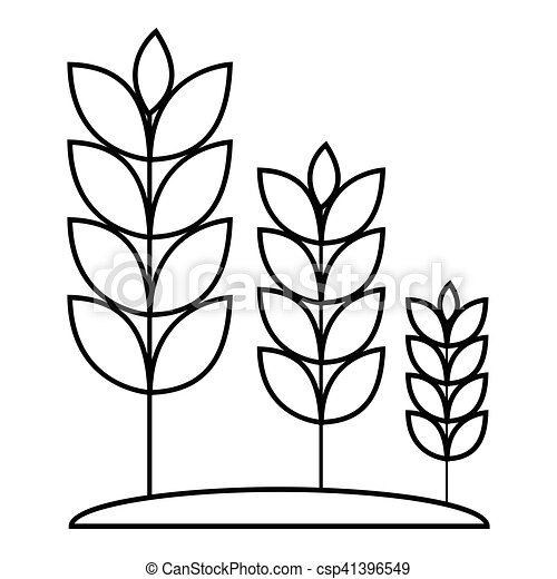 wheat germ icon outline style wheat germ icon outline eps rh canstockphoto com what clip art in power point 2013 wheat clip art free