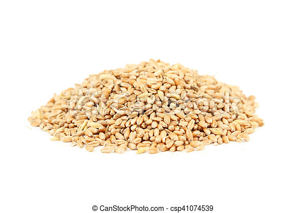 Wheat grains isolated on a white - csp41074539