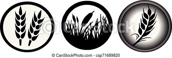 wheat icon on white background - csp71689820