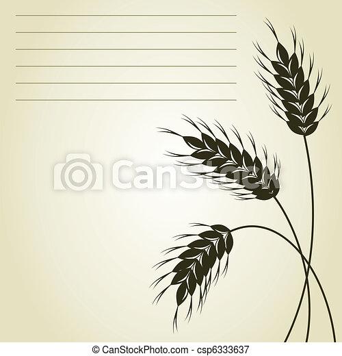 Wheat - csp6333637