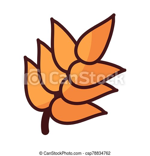 wheat leaves on white background - csp78834762
