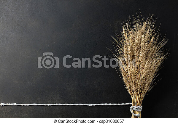 wheat on black background - csp31032657