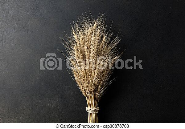 wheat on black background - csp30878703