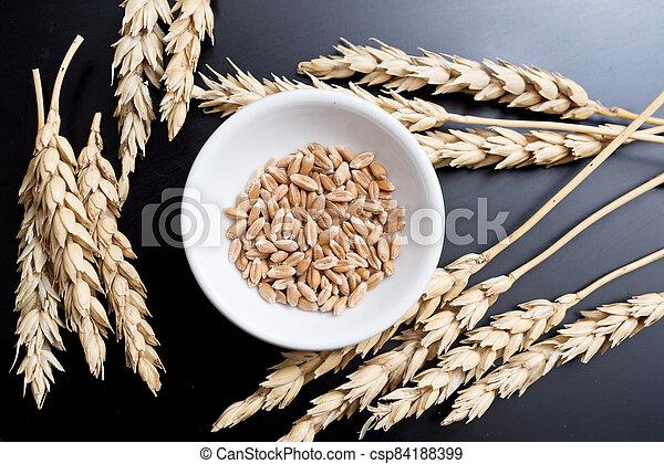 Wheat on black - csp84188399