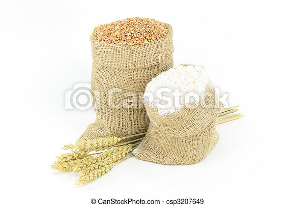 Wheat - Plants, Kernel, Flour.  - csp3207649