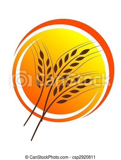 Wheat straw illustrtion - csp2920811