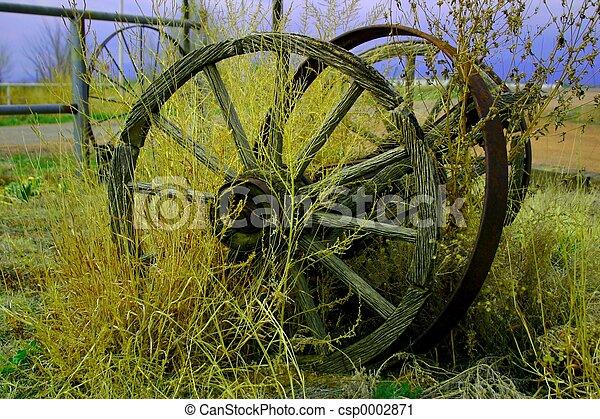 Wheel 3960 - csp0002871