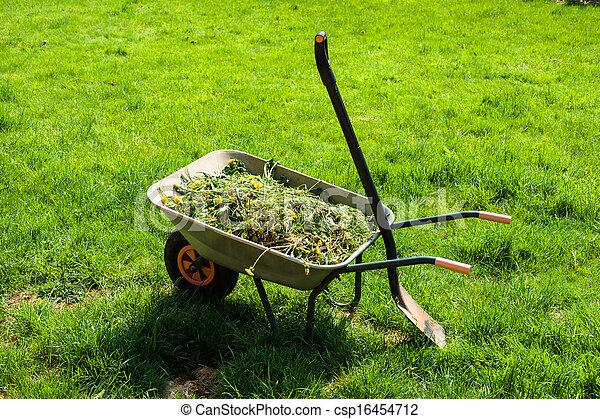 Wheelbarrow on lawn - csp16454712